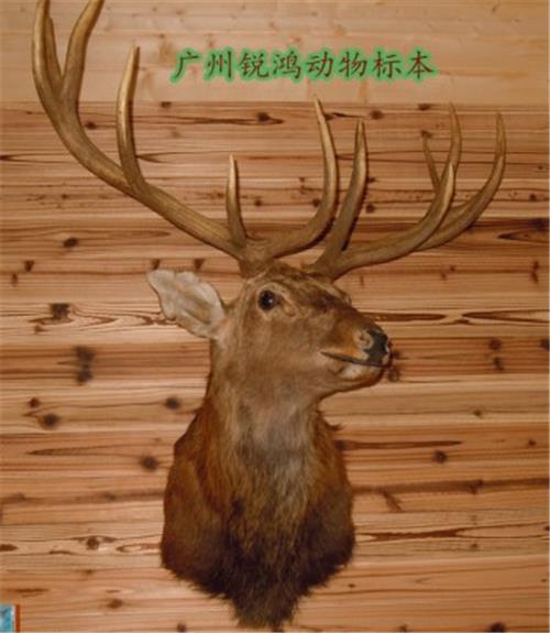 木雕动物三维模型素材
