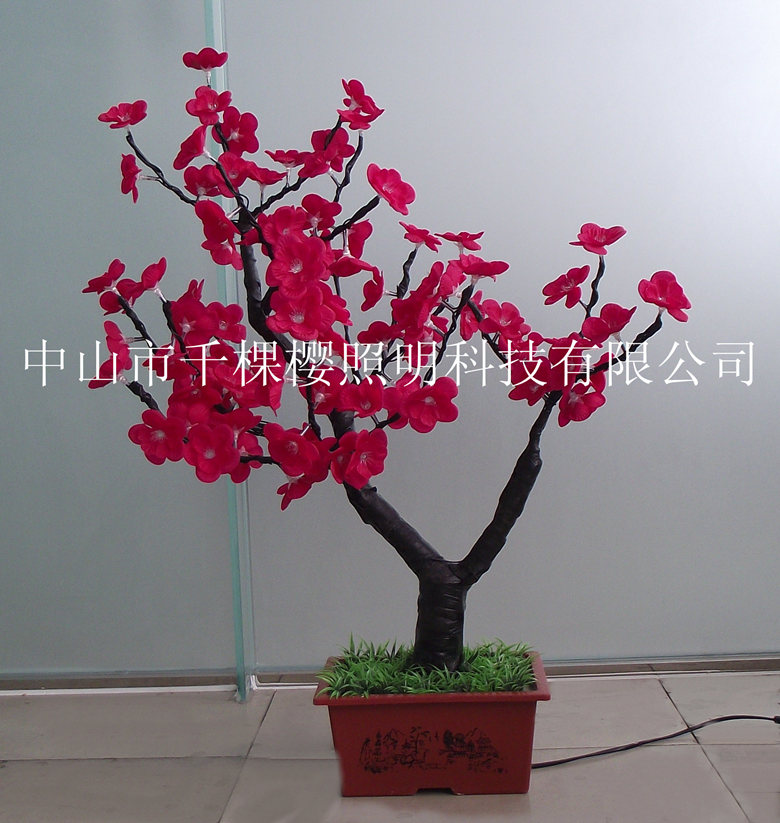 红色大花小盆景