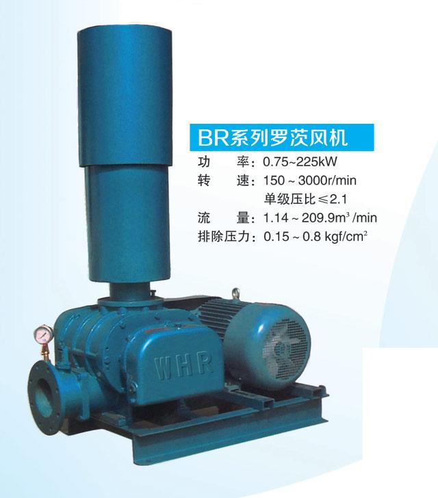 罗茨风机|昆明水处理设备