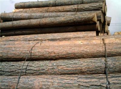 原木-广州市番禺区石基伍灵庆建筑材料经营部提供原木