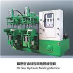 油封专用热压成型机