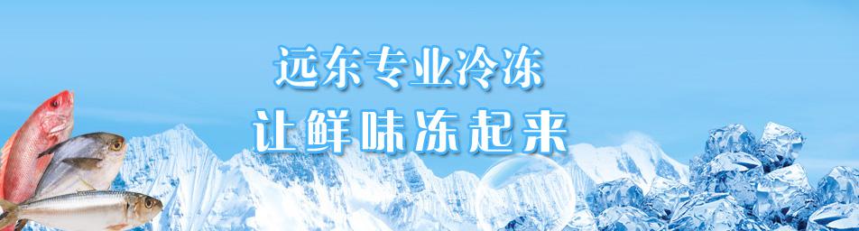 冷冻水产品厂家