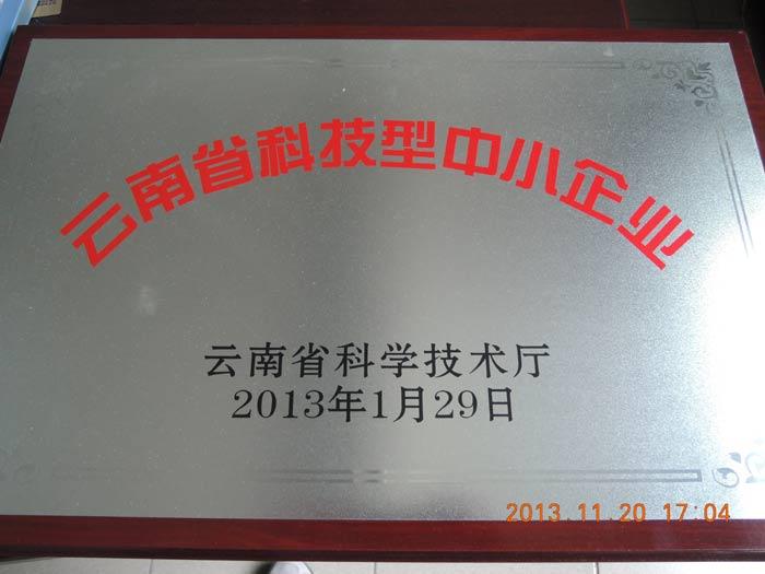 云南省科技型中小企業