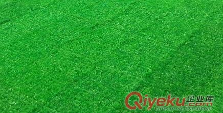 厂家直销仿真草坪13269688586图片|厂家直销仿真草坪
