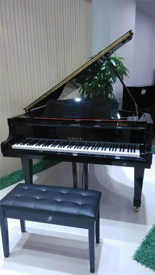 三角钢琴出租-佛山声美琴业有限公司提供三角钢琴