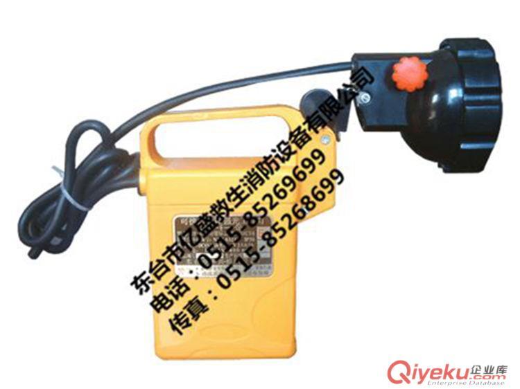 DF-4B系列可携式防爆强光工作灯(充电型电安全灯)